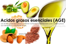 re-acidos-grasos