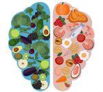 cerebro-y-nutricion