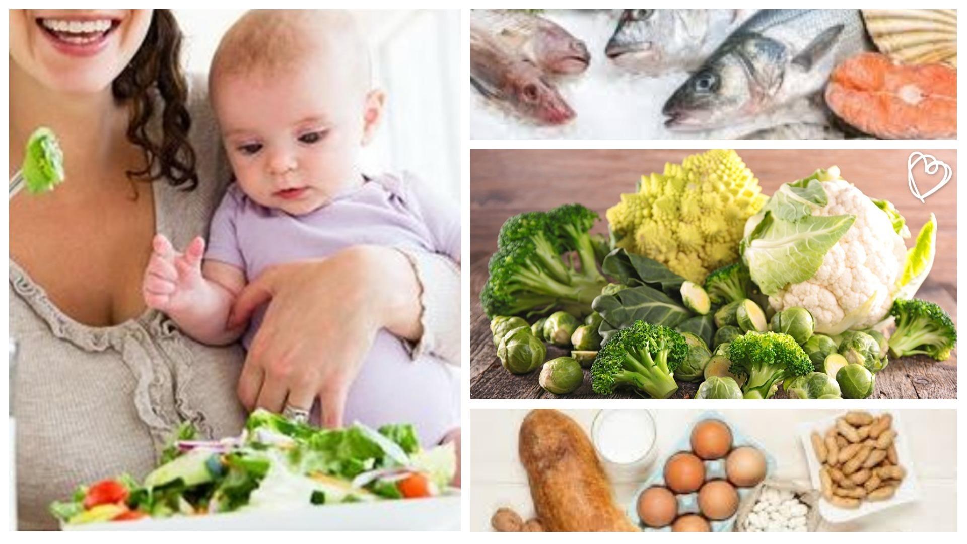 Proteina permitidos alimentos alergia vaca