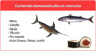 pescado mercurio