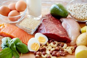 proteina-animal-vegetal