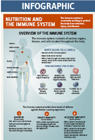immunity-infographic-thumbnail-with-header